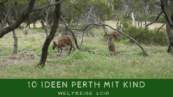 10 (Geldbeutel freundliche) Ideen für Perth mit Kind