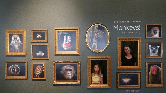 Brisbane Queensland Museum Monkey