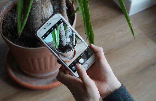 Fotorallye für Kinder – eine sinnvolle Beschäftigungsidee für Zuhause gegen Langeweile