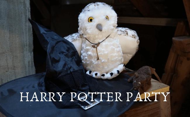 Harry Potter Party zum Kindergeburtstag