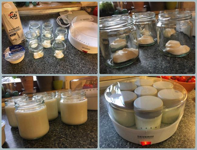 Joghurt Selbst Machen fruchtzwerge für kinder lieber joghurt selber machen