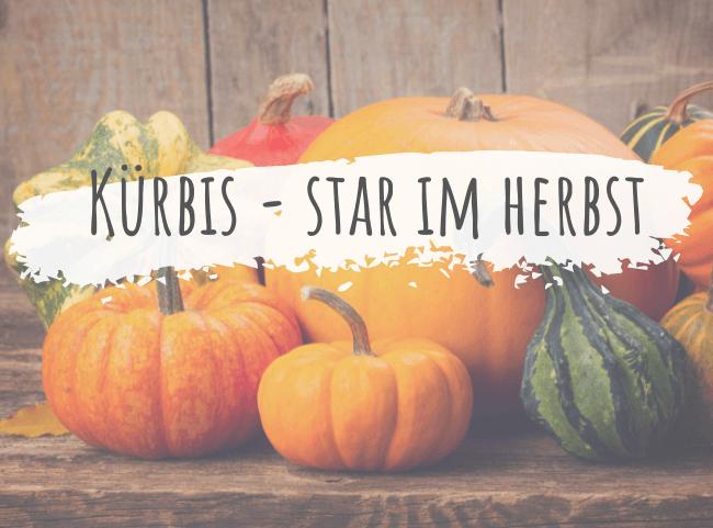 Kürbis – der Star der Herbstküche im Überblick