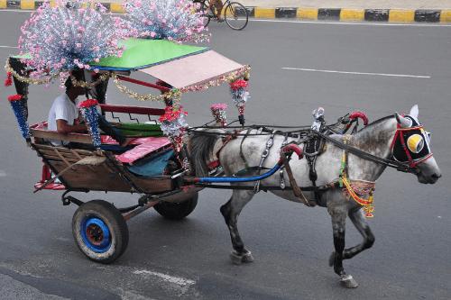 Von Indonesien nach Kambodscha